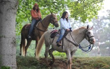 Sandy Bottoms Trail Ride Ashville NC